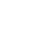 big fish real estate at lake martin logo
